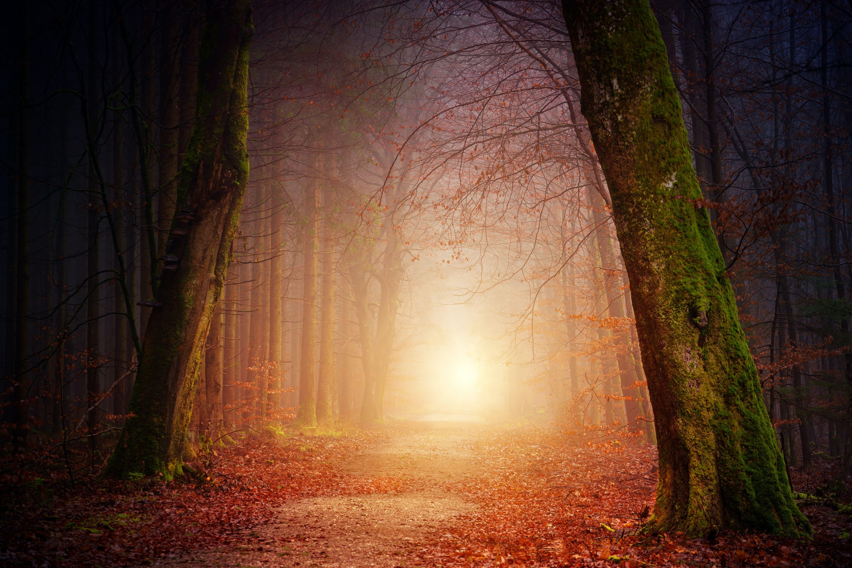 Hin zu einer Spiritualität von morgen